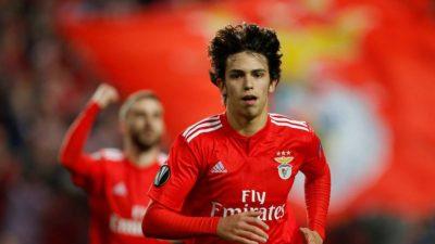 Il Napoli si muove sul mercato: piace Joao Felix del Benfica